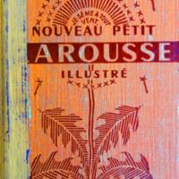 Petit Larousse.jpg